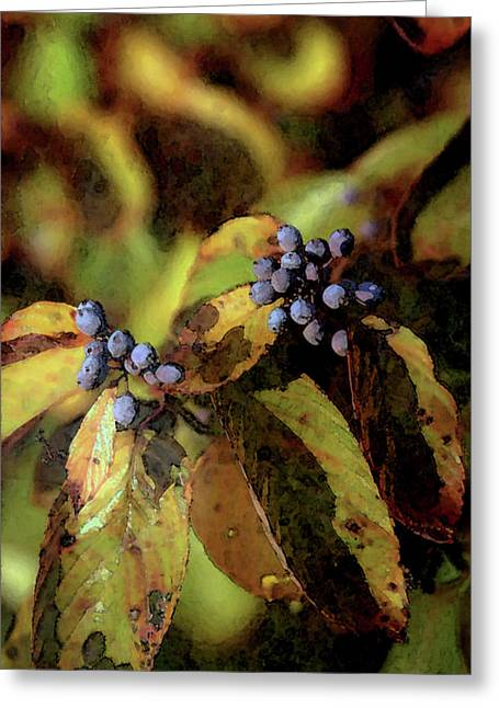Autumn Berries 6047 Dp_2 Greeting Card