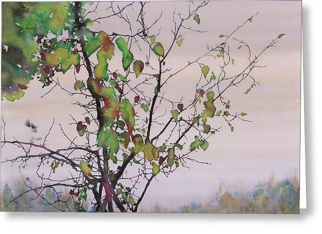 Lake Tapestries - Textiles Greeting Cards - Autumn Birch by Sand Creek Greeting Card by Carolyn Doe