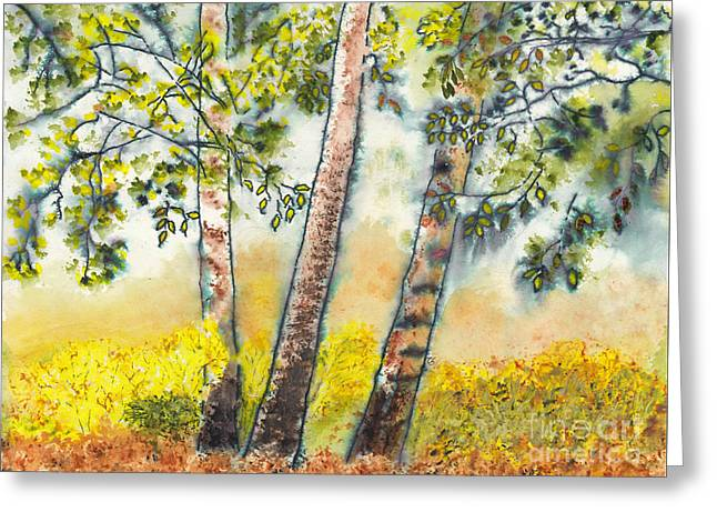 Autumn Birch Trees Greeting Card