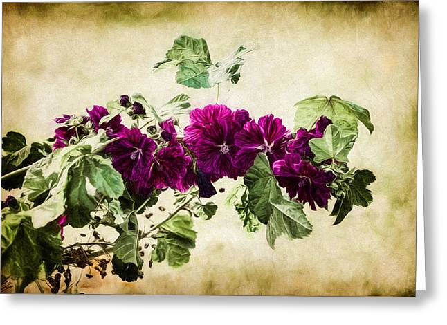 Autumn Blooms Paintography Greeting Card