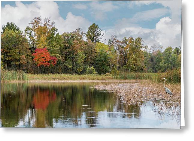 Autumn Blue Heron Greeting Card
