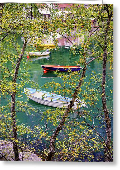 Greeting Card featuring the photograph Autumn. Boats by Dmytro Korol