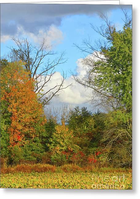 Autumn Breeze Nature Art Greeting Card