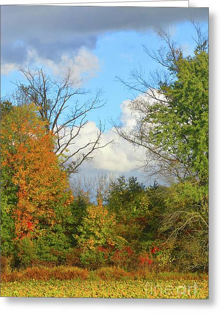 Autumn Breeze Nature Art Greeting Card