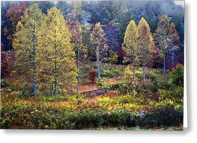 Autumn Bridge Under Color Greeting Card