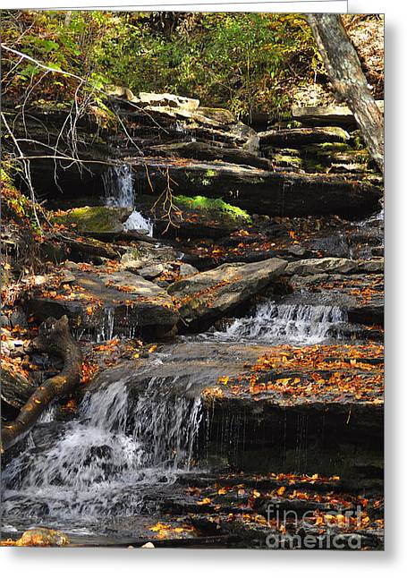 Autumn Brook Greeting Card by Diane E Berry