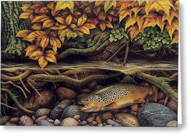 Minnows Greeting Cards - Autumn Brown Trout Greeting Card by JQ Licensing