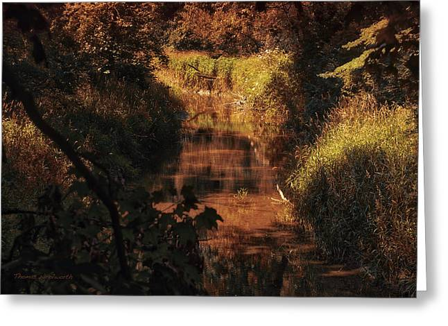 Autumn By The Argyle Creek Greeting Card by Thomas Woolworth