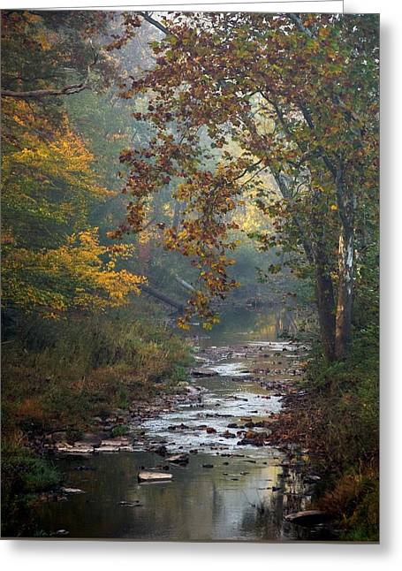 Greeting Card featuring the photograph Autumn By The Creek by Elsa Marie Santoro