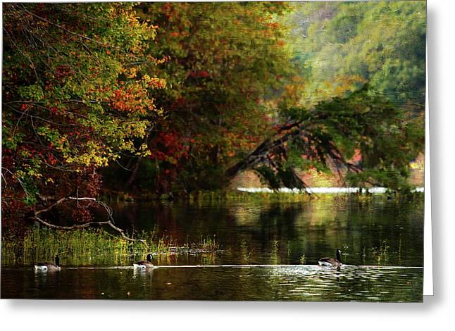 Autumn By The Lake Greeting Card by Scott Fracasso