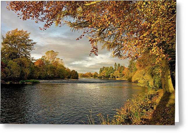 Autumn By The River Ness Greeting Card by Jacqi Elmslie