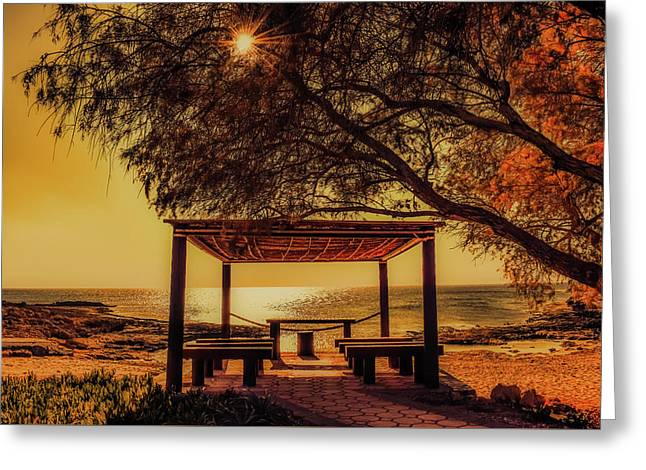 Autumn By The Sea Greeting Card by Demitri Vetsikas