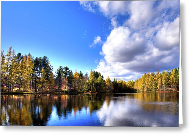 Greeting Card featuring the photograph Autumn Calm At Woodcraft Camp by David Patterson