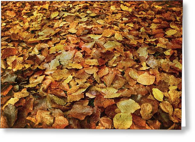 Autumn Carpet Greeting Card