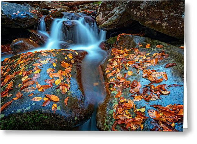 Autumn Cascade In The Smokies Greeting Card
