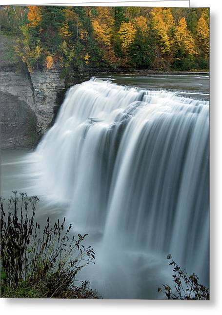 Autumn Cascade Greeting Card by Timothy McIntyre