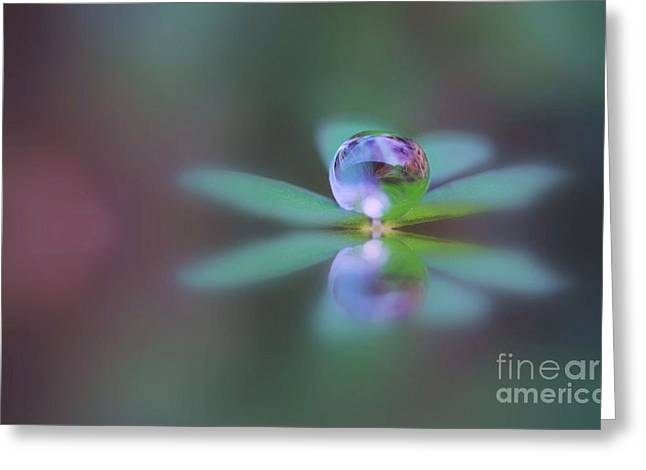 Autumn Clover Droplet Greeting Card by Kym Clarke