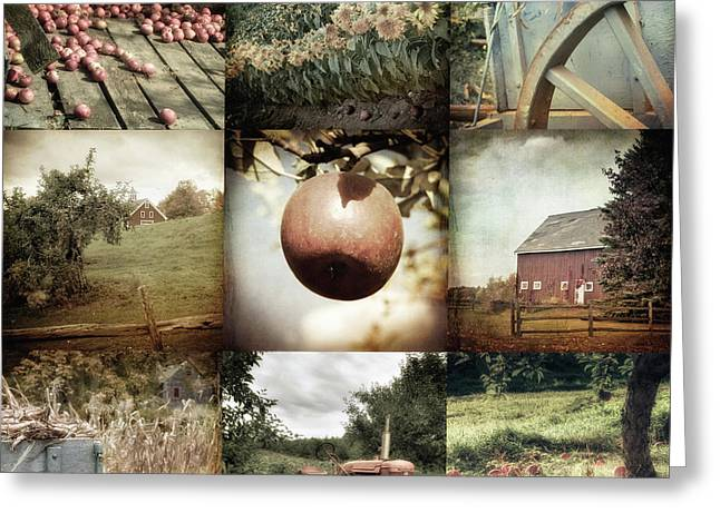 Greeting Card featuring the photograph Autumn Collage - Autumn In New England by Joann Vitali