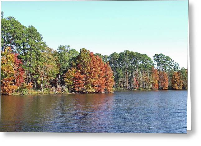 Greeting Card featuring the photograph Autumn Color At Ratcliff Lake by Jayne Wilson