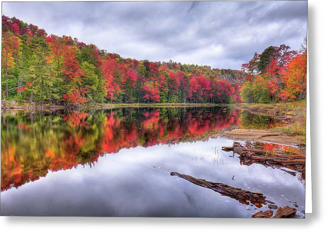 Greeting Card featuring the photograph Autumn Color At The Pond by David Patterson