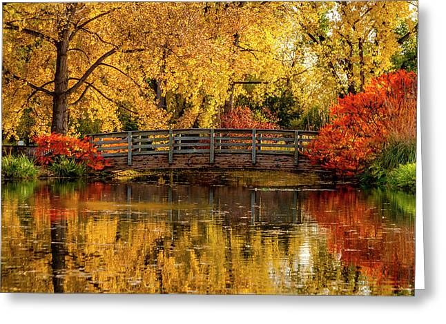 Autumn Color By The Pond Greeting Card