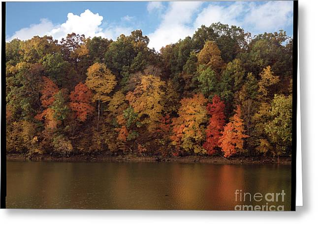 Autumn Color In The Ozarks, Southwest Missouri Usa Greeting Card