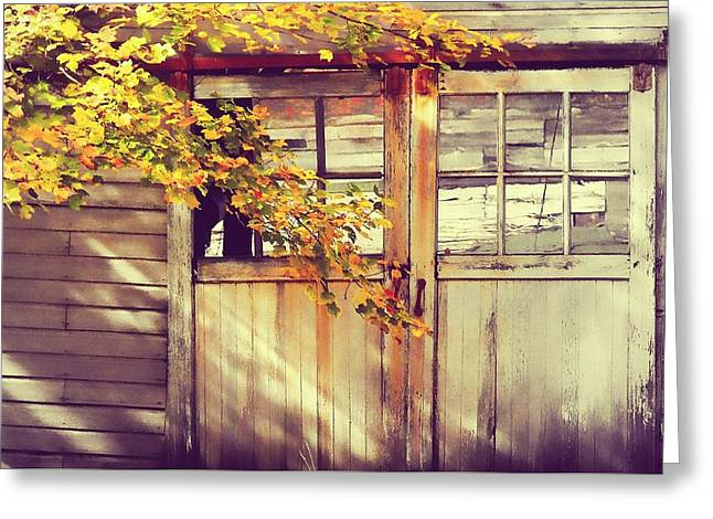 Autumn Color Greeting Card by JAMART Photography