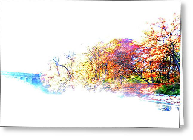 Autumn Colors Greeting Card by Hannes Cmarits