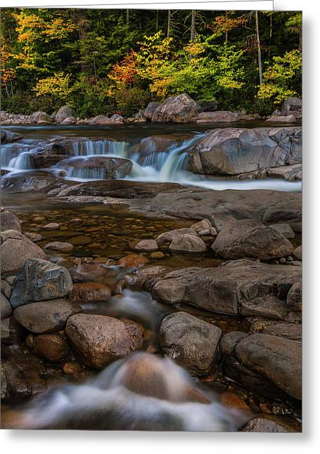 Autumn Colors In White Mountains New Hampshire Greeting Card