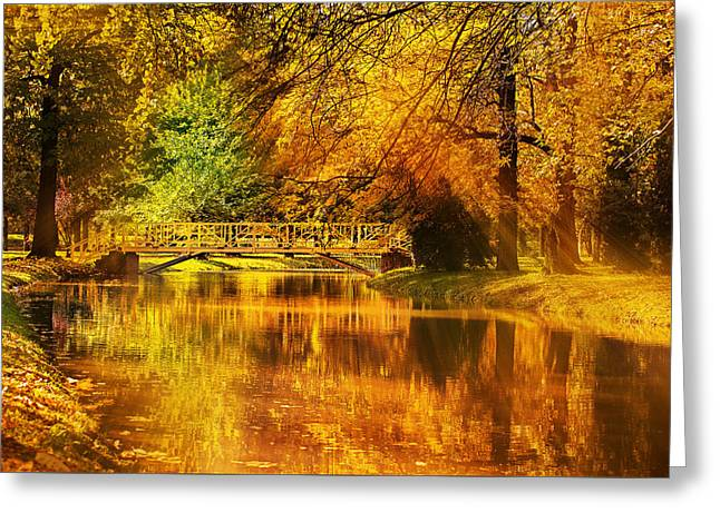 Autumn Colors Greeting Card by Ivan Vukelic
