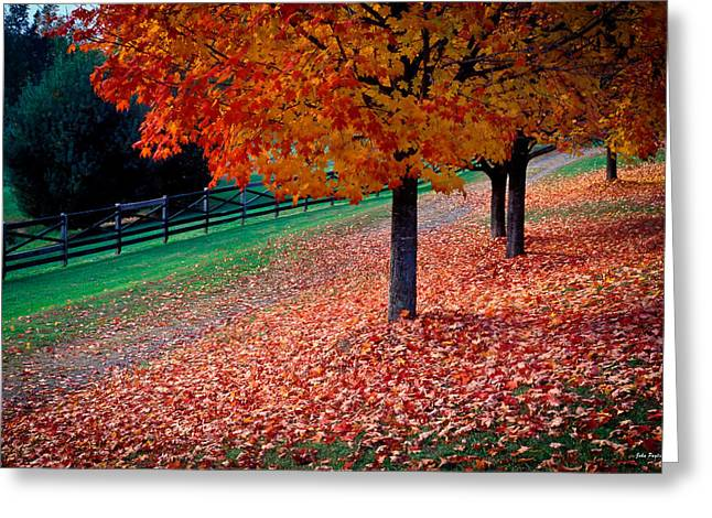 Autumn Colors Greeting Card by John Pagliuca