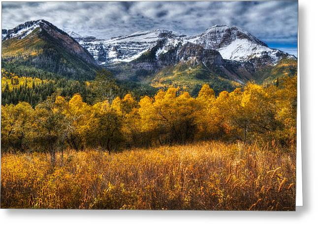 Autumn Colors On Mount Timpanogos Greeting Card