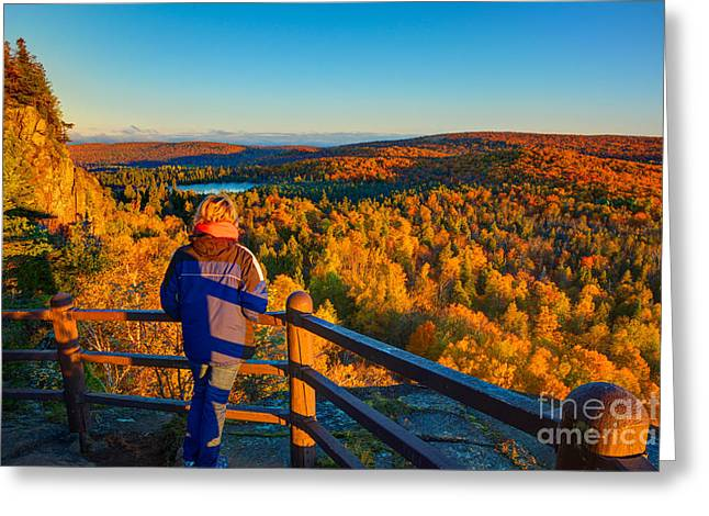 Autumn Colors Orberg Mountain North Shore Minnesota  Greeting Card by Wayne Moran