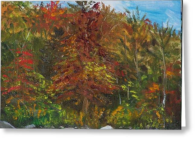 Autumn Colors Greeting Card by Pamela Wilson