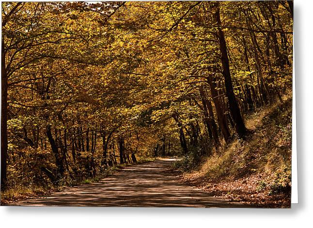 Greeting Card featuring the photograph Autumn Colours by Nikos Stavrakas