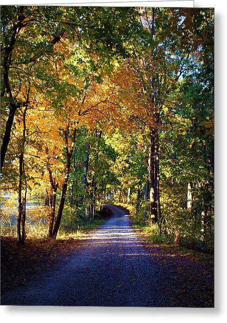 Autumn Country Lane II Greeting Card by Cricket Hackmann