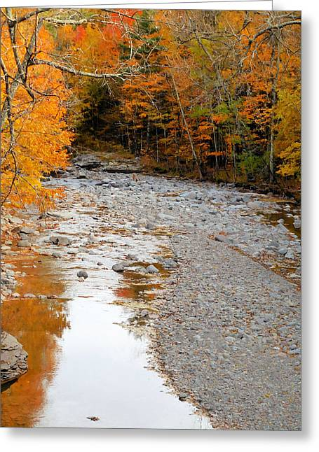 Autumn Creek 9 Greeting Card by Lanjee Chee