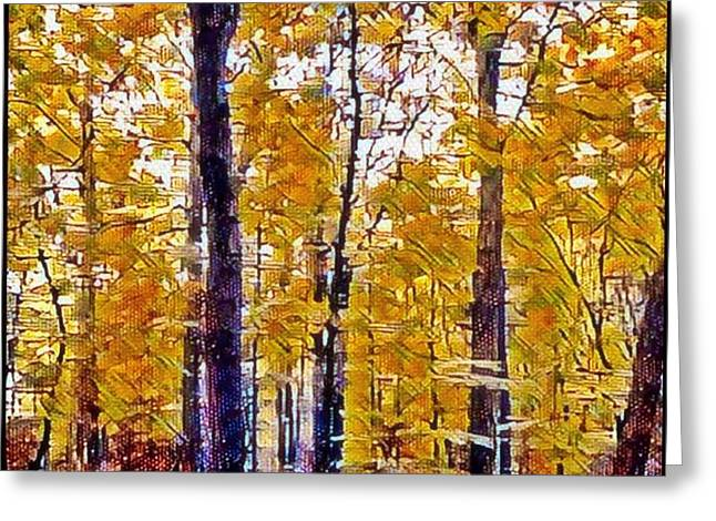 Autumn  Day In The Woods Greeting Card