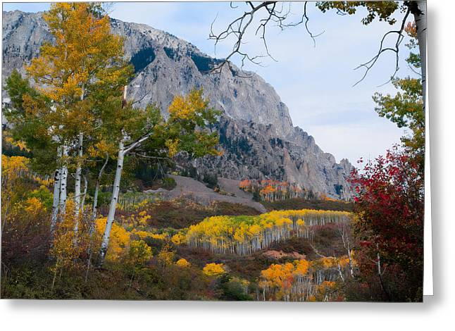Autumn Days Greeting Card by Tim Reaves
