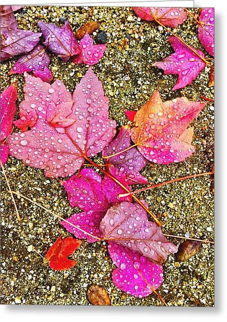 Autumn Dew Greeting Card