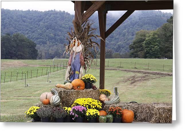 Autumn Display Greeting Card by Linda A Waterhouse