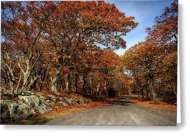 Autumn Dreams 1 Greeting Card by Lara Ellis