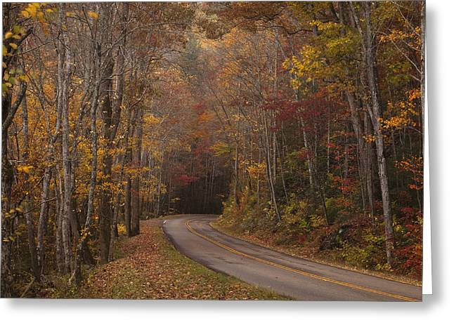 Smoky Greeting Cards - Autumn Drive Greeting Card by Andrew Soundarajan