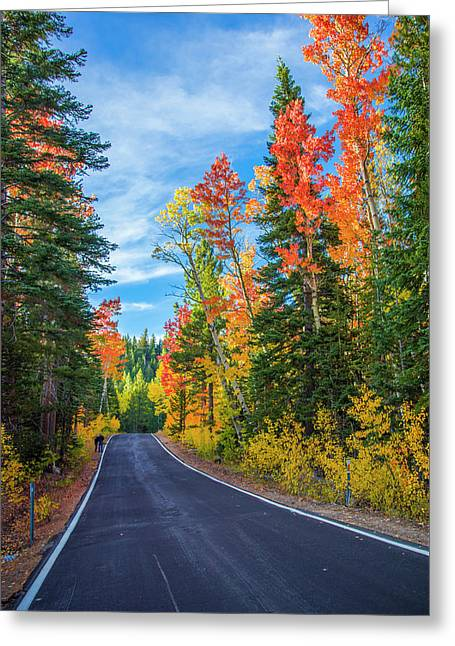 Autumn Drive Over Ebbotts Pass Greeting Card