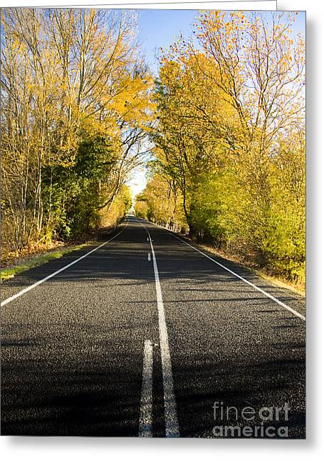 Autumn Drive Greeting Card by Jorgo Photography - Wall Art Gallery