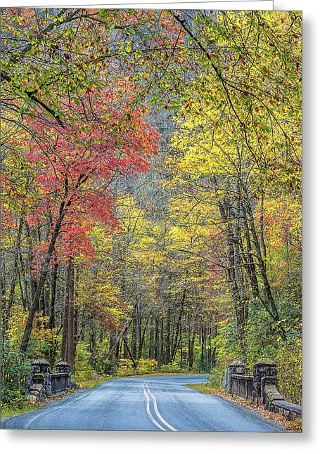 Autumn Drive Through Pisgah National Forest Greeting Card by Donnie Whitaker