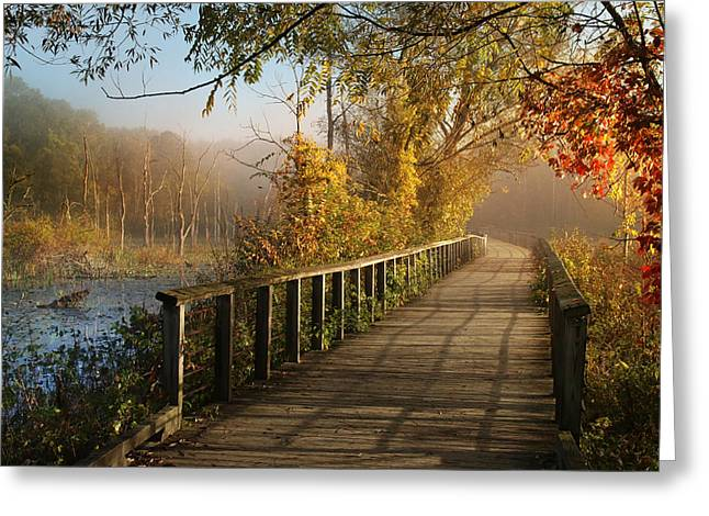 Autumn Emerging Greeting Card by Rob Blair