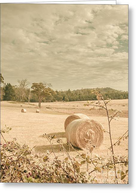 Autumn Farming And Agriculture Landscape Greeting Card by Jorgo Photography - Wall Art Gallery