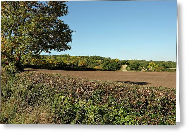 Autumn Farmland Greeting Card
