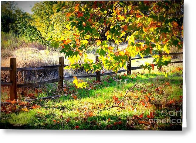 Autumn Fence Greeting Card by Carol Groenen